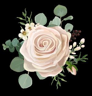 fleurs-illustration-roses-clair