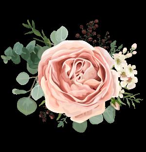 fleurs-illustration-roses