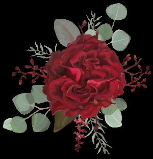 fleurs-illustration-rouge
